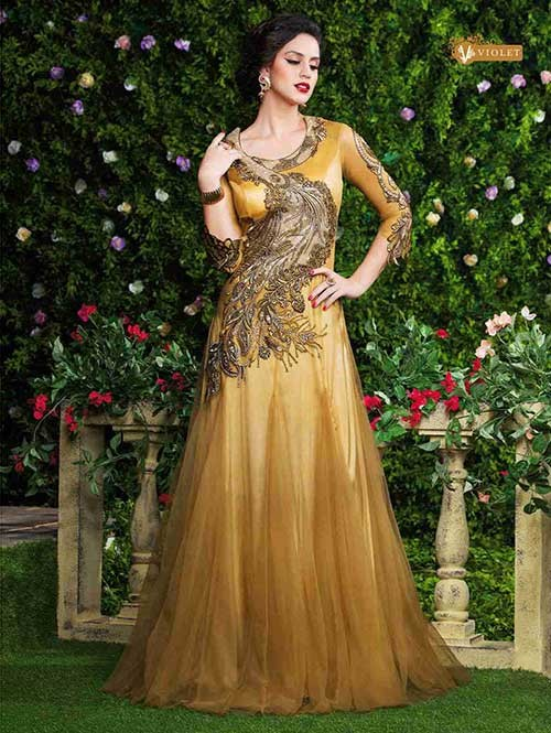 Beige Colored Beautiful Embroidered Net Gown