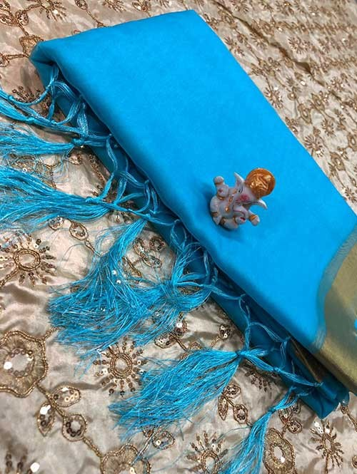 Branded Sky Colored Beautiful Organza Saree With Heavy Worked Blous