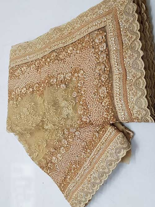 Chikoo Colored Beautiful Embroidered Net Saree With Dimond work and Pearl work
