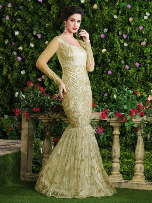 Cream Colored Beautiful Embroidered Net Gown