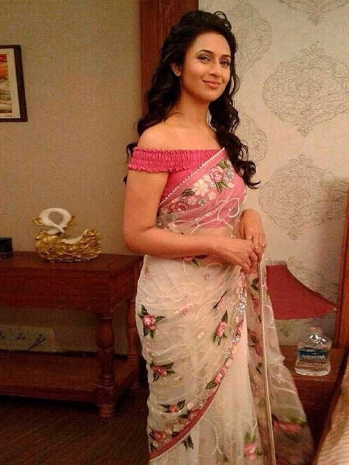 Divyanka Tripathi in Beautiful Embroidered Nylon Net Saree