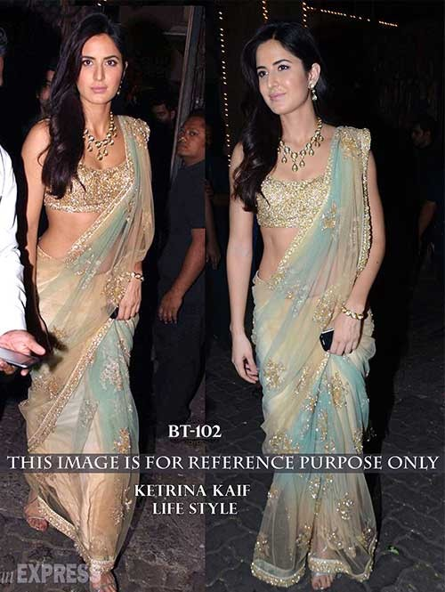 Katrina Multi Colored Beautiful Embroidered Nylon Net Saree
