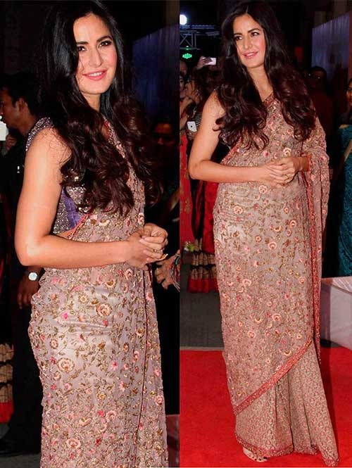 Ketrina Kaif in Beautiful Embroidered Nylon Net Saree