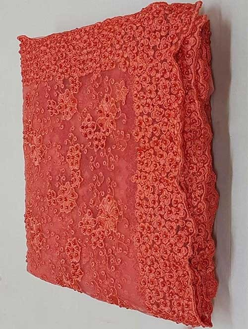 Rust Colored Beautiful Embroidered Net Saree