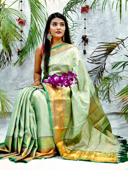 Traditional kanchipuram saree in Green