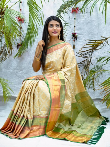 Traditional kanchipuram saree in White