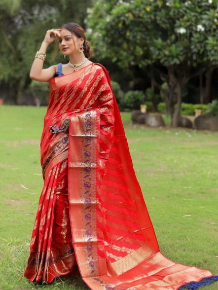 beautiful saree for party